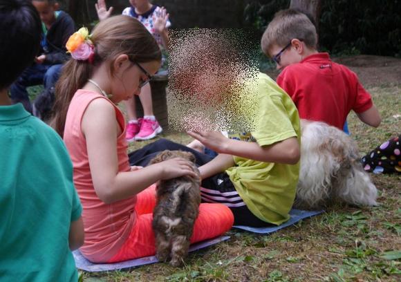 Schulhund mit Kindern