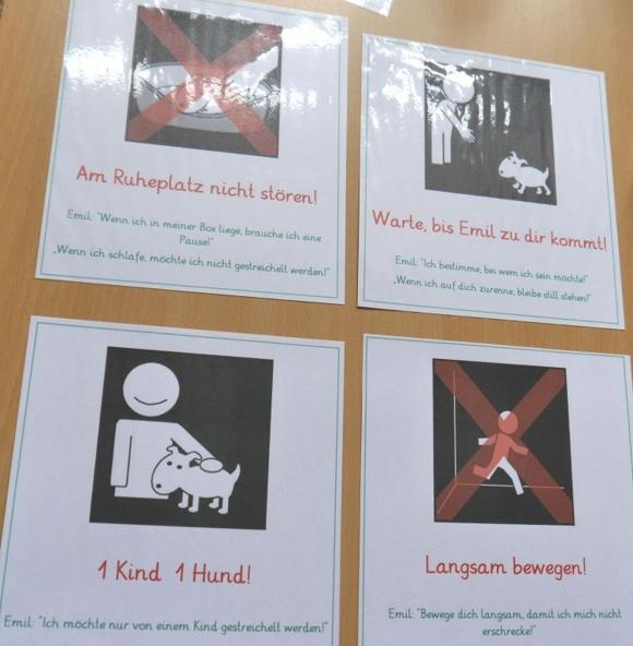 Schulhund Plakate